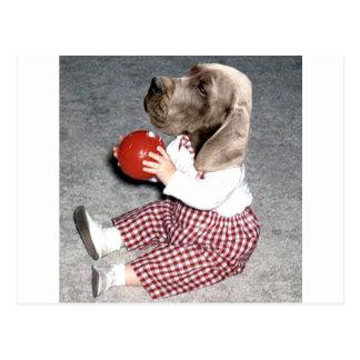 Jagdhund Ball-Spiel Postkarte