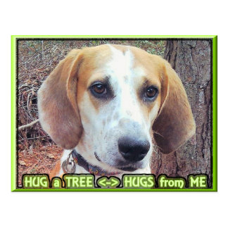 Jagdhund-Baum Hugger Postkarte