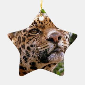 Jaguar neugierig keramik ornament