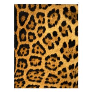 Jaguar-Pelz-Druck Postkarte