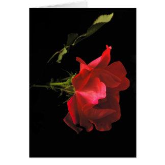 Jahrestags-Rose Karte