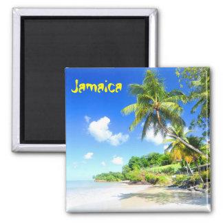 Jamaika Quadratischer Magnet