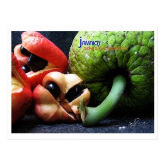 Jamaikanische Ackee-Frucht und Brotfrüchte Postkarte