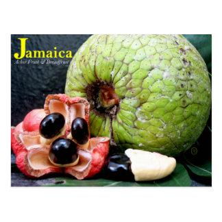 Jamaikanische Brotfrüchte und Ackee-Frucht 2k17 Postkarte