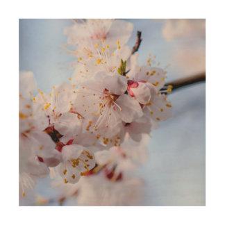 Japanische Aprikosen-Blüte Holzwanddeko