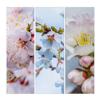 Japanische Aprikosen-Blüte Triptychon