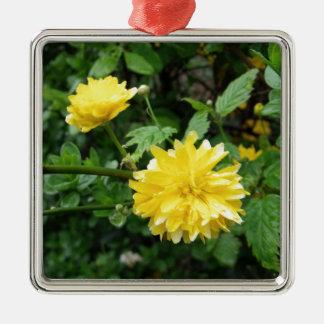 Japanische gelbe Rosen-Blume Kerria Japonica Silbernes Ornament