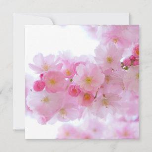Japanischer Kirschbaum Blossom Karte
