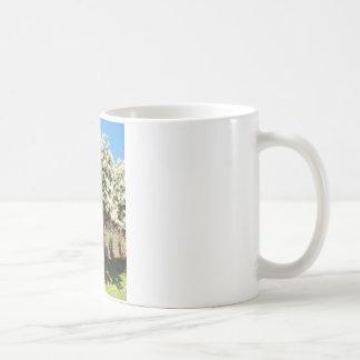 Jasmin-Baum in der Blüte Kaffeetasse