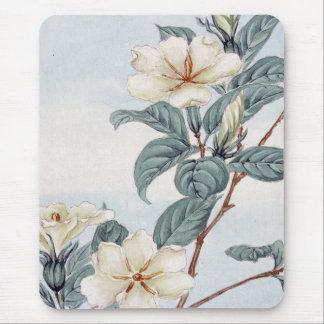 Jasmin-Blumen (Vintage japanische Kunst) Mauspads