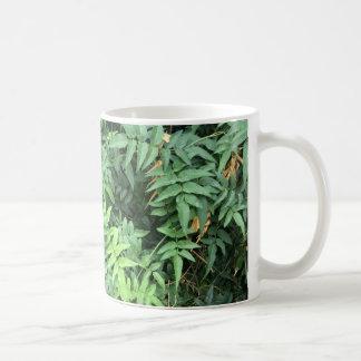 Jasmin Kaffeetasse