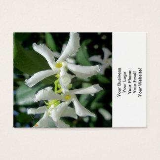 Jasmin-weiße Rohr-Blume Visitenkarte