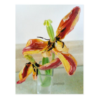jjhelene Artisitc Tanzen-Tulpe-Postkarte Postkarte