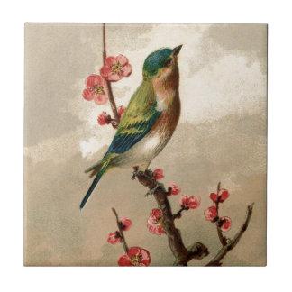 Joli oiseau vintage petit carreau carré
