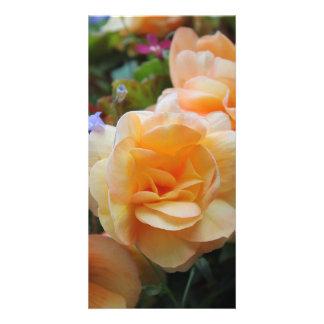 Jolies fleurs cartes avec photo