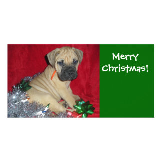 Joyeux Noël - Bullmastiff Carte Avec Photo