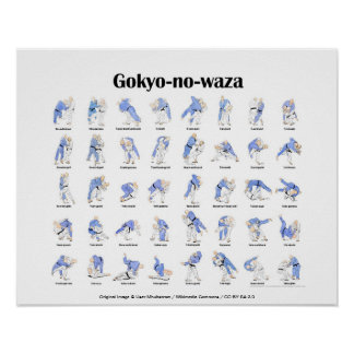 Judo-Würfe Poster