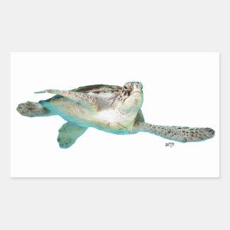 Jugendliche grüne Meeresschildkröte Rechteckiger Aufkleber