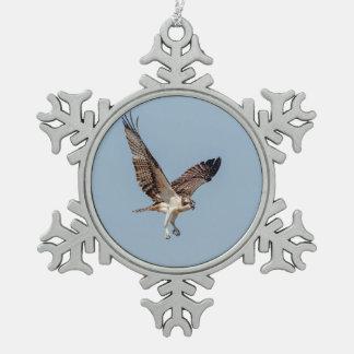 Jugendlicher Osprey im Flug Schneeflocken Zinn-Ornament
