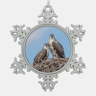 Jugendlicher Osprey im Nest Schneeflocken Zinn-Ornament