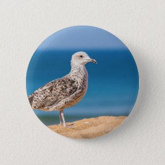 Junge braune Seemöwe auf Strand mit sea.JPG Runder Button 5,7 Cm