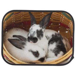 Junge Rex Kaninchen in Ostern-Korb 2 Autofußmatte