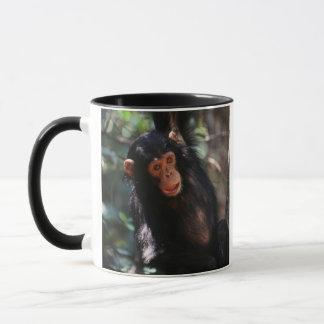 Junger Schimpanse, der am Wald hängt Tasse