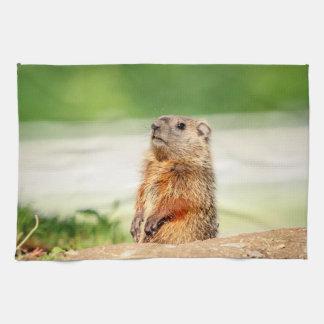 Junges Groundhog Handtuch