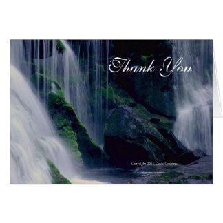 Kahle Fluss-Fälle danken Ihnen notecard Karte
