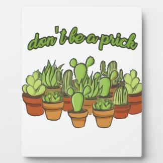 Kaktus Fotoplatte