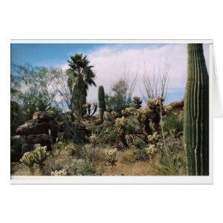 Kaktus-Garten Karte