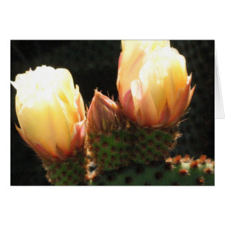 Kaktus mit weißen Blumen Karte