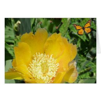 Kaktus und Schmetterlinge Karte