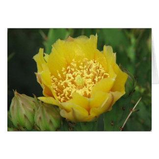 Kaktusfeige-Kaktus-Blüte Karte