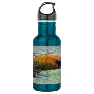 Kalb durch Nebenfluss in der Fall-Wasser-Flasche Trinkflasche