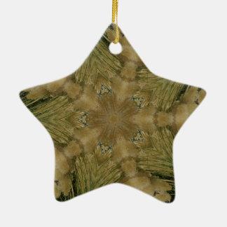 Kaleidoskop-Entwurfs-Stern vom Pampas-Gras-Grün Keramik Ornament