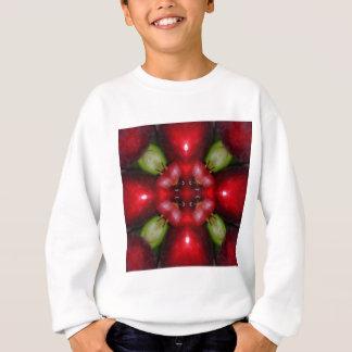 Kaleidoskopäpfel und -trauben sweatshirt