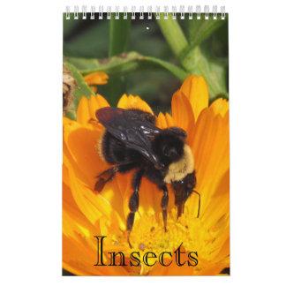 Kalender - Insekten (sgl. Seite.) Kalender