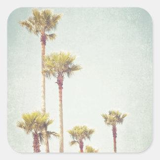 Kalifornien, das Retro Palme-Fotografie träumt Quadratischer Aufkleber