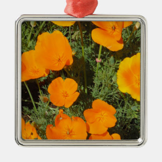 Kalifornien-Mohnblume Silbernes Ornament