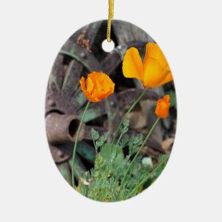 Kalifornien-Mohnblumen Ovales Keramik Ornament