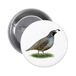 Kalifornien-Tal-Wachteln Runder Button 5,7 Cm