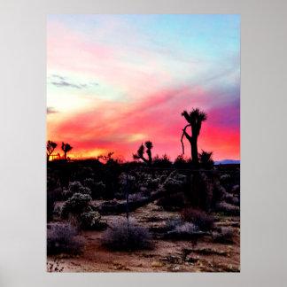 Kalifornien-Wüsten-Sonnenuntergang Poster