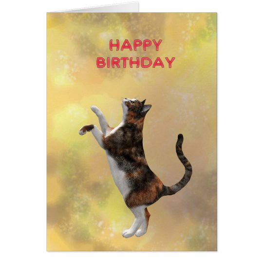 Kalikokatze und alles Gute zum Geburtstag Karte