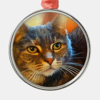 Kalikotabby-Katzen-Verzierung durch Carol Zeock Silbernes Ornament