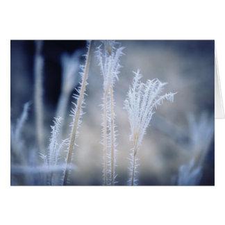 Kälte ein Winter Frost auf einer Weihnachtskarte Karte