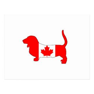 Kanada Basset Hound Postkarte