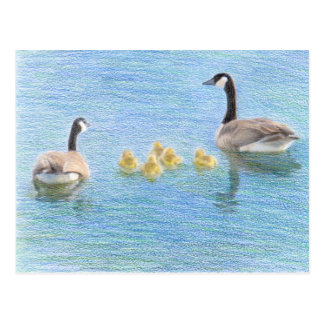 Kanada-Gans-Familien-Kunst-Natur-Postkarte Postkarte