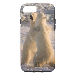 Kanada, Manitoba, Hudson Bay, Churchill. 2 iPhone 8/7 Hülle