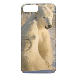 Kanada, Manitoba, Hudson Bay, Churchill. iPhone 8 Plus/7 Plus Hülle